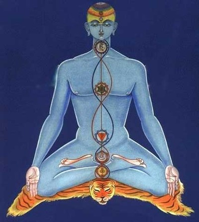 yoganice, yoga nice, cours yoga nice, isabelle bourjac