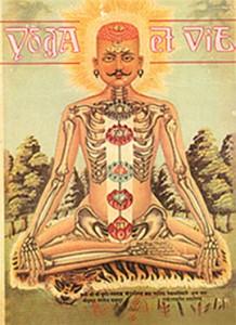 couv_Yoga et Vie