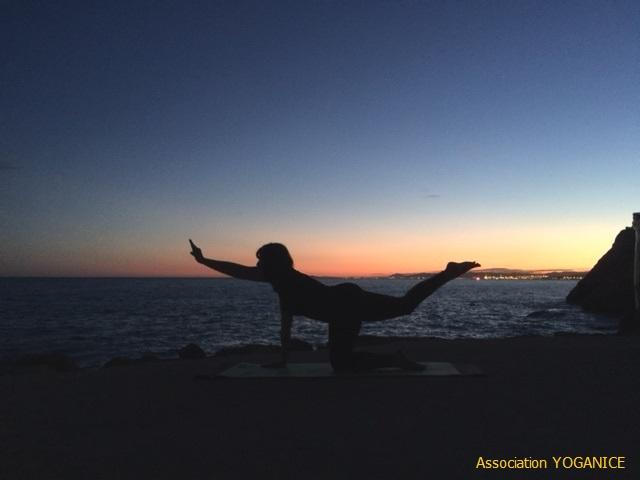 yoganice vidéo yoga nice