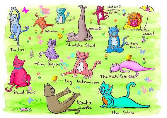 Quand les chats font du yoga